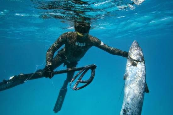 Du lịch bắn cá đại dương