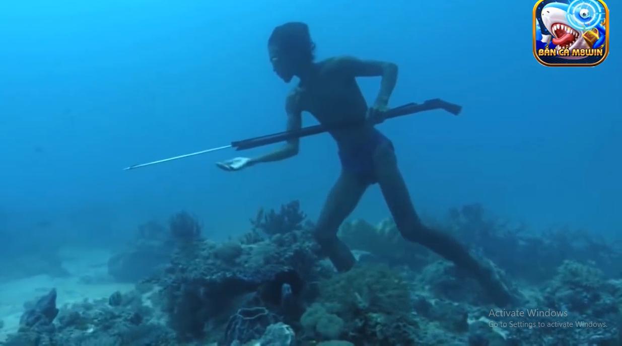 Lặn bắn cá biển không cần bình dưỡng khí